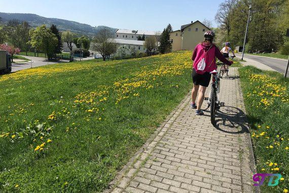 Fahrrad Tour Radweg Butterblumen Wiese