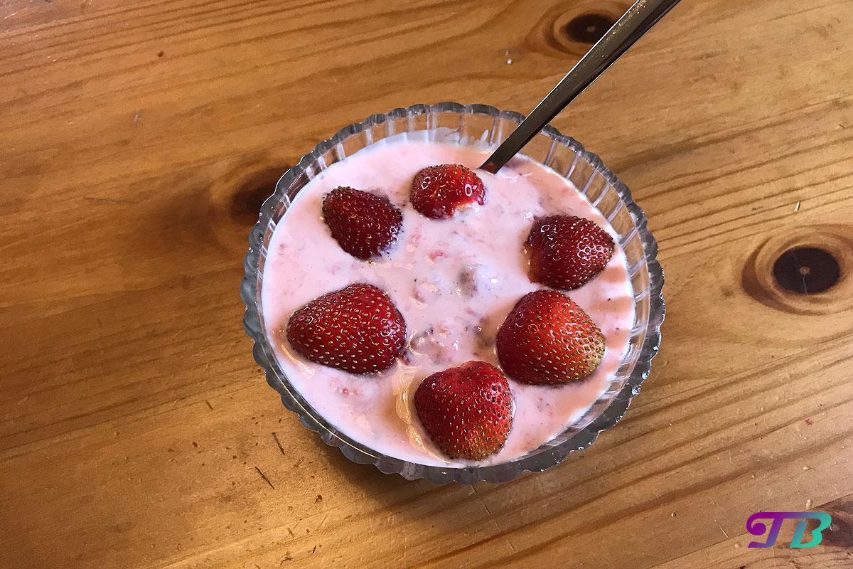 Selbstgemachter Erdbeer-Joghurt – einfach und schnell zum sommerlichen Genuss