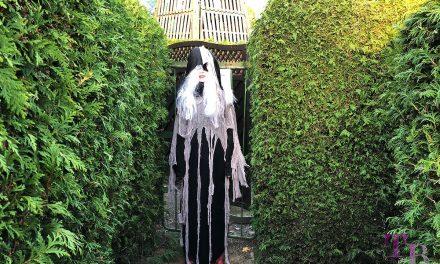 Kostümprobe für die Halloween-Party oder: Geisternacht im Irrgarten Kleinwelka
