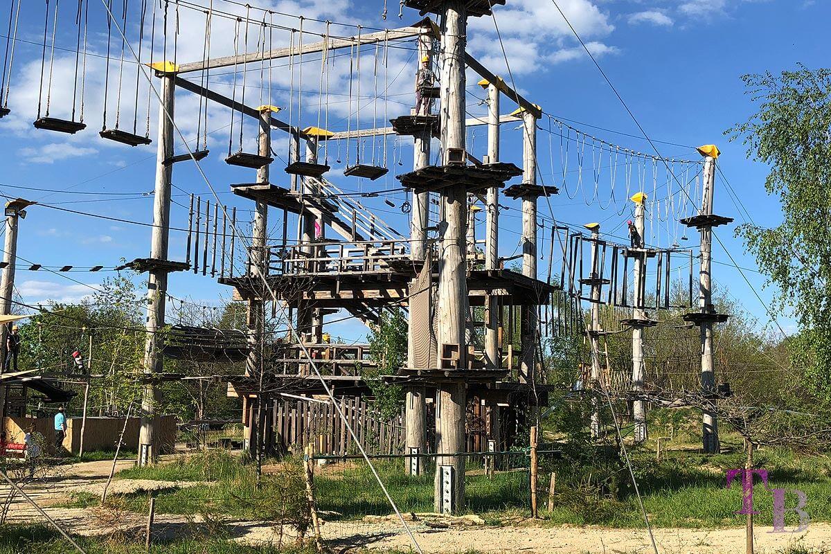 Spaß, Action und Nervenkitzel pur im Hochseilgarten Geo Trail Bautzen