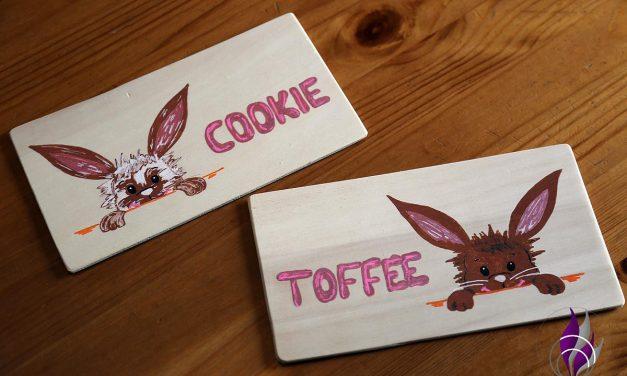 Namensschilder für unser Hasen Cookie und Toffee – DIY-Projekt mit Holz