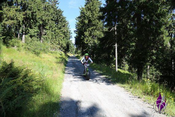 fun4family Monsterroller Oberwiesenthal Erzgebirge Abfahrt