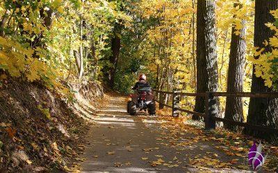 Herbstzeit – Lasst uns bunte Blätter, Eicheln & Kastanien sammeln