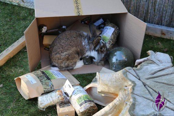 fun4family Mr Crumble Unboxing Ergänzungsfutter Kaninchen