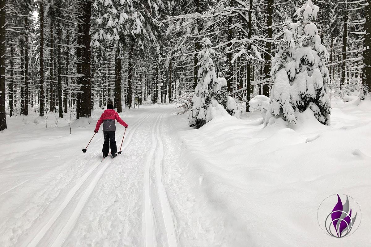 fun4family Skilanglauf Langlaufski Schnee Winter Wald Loipen