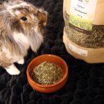 Kräuterwiese – getreidefreies Ergänzungsfutter für Kaninchen