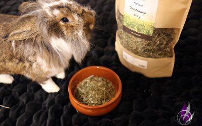 Sponsored Post Kräuterwiese – getreidefreies Ergänzungsfutter für Kaninchen