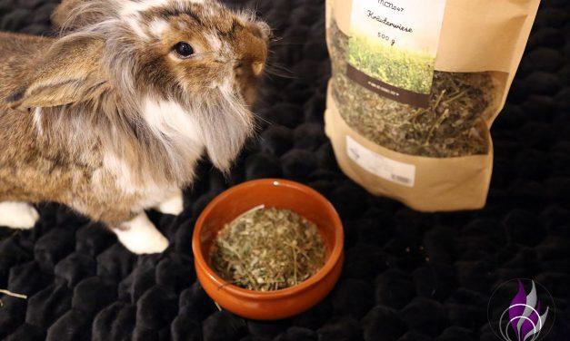 """<span class=""""sponsored_text""""> Sponsored Post</span> Kräuterwiese – getreidefreies Ergänzungsfutter für Kaninchen"""