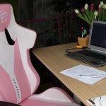 Elite Gaming Stuhl – ergonomischer Bürostuhl für Homeoffice im Test