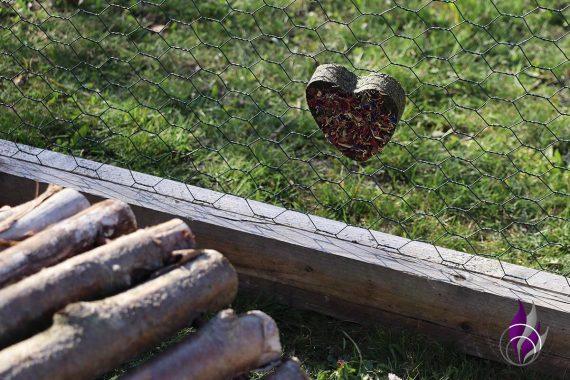 Knabber Herz Petersilien Blüten Mr. Crumle Anhänger Kaninchen