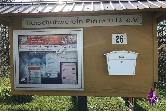 Schulprojekt Tierheim Pirna Spende Spendenbox Übergabe