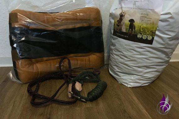 Schulprojekt Tierheim Spende Mr. Crumble Hunde Produkte